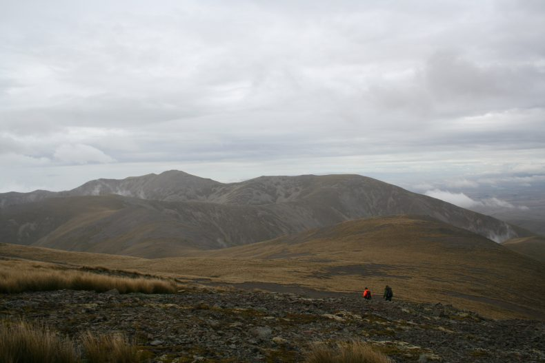 Tramping over the tops of the Ida Range, Otago, looking for Myosotis. Photo by Heidi Meudt @ Te Papa.