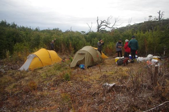 Bush clearing with one yellow and one green tent and four people standing next to the tents with camping and monitoring gear. Grey sky in the background.