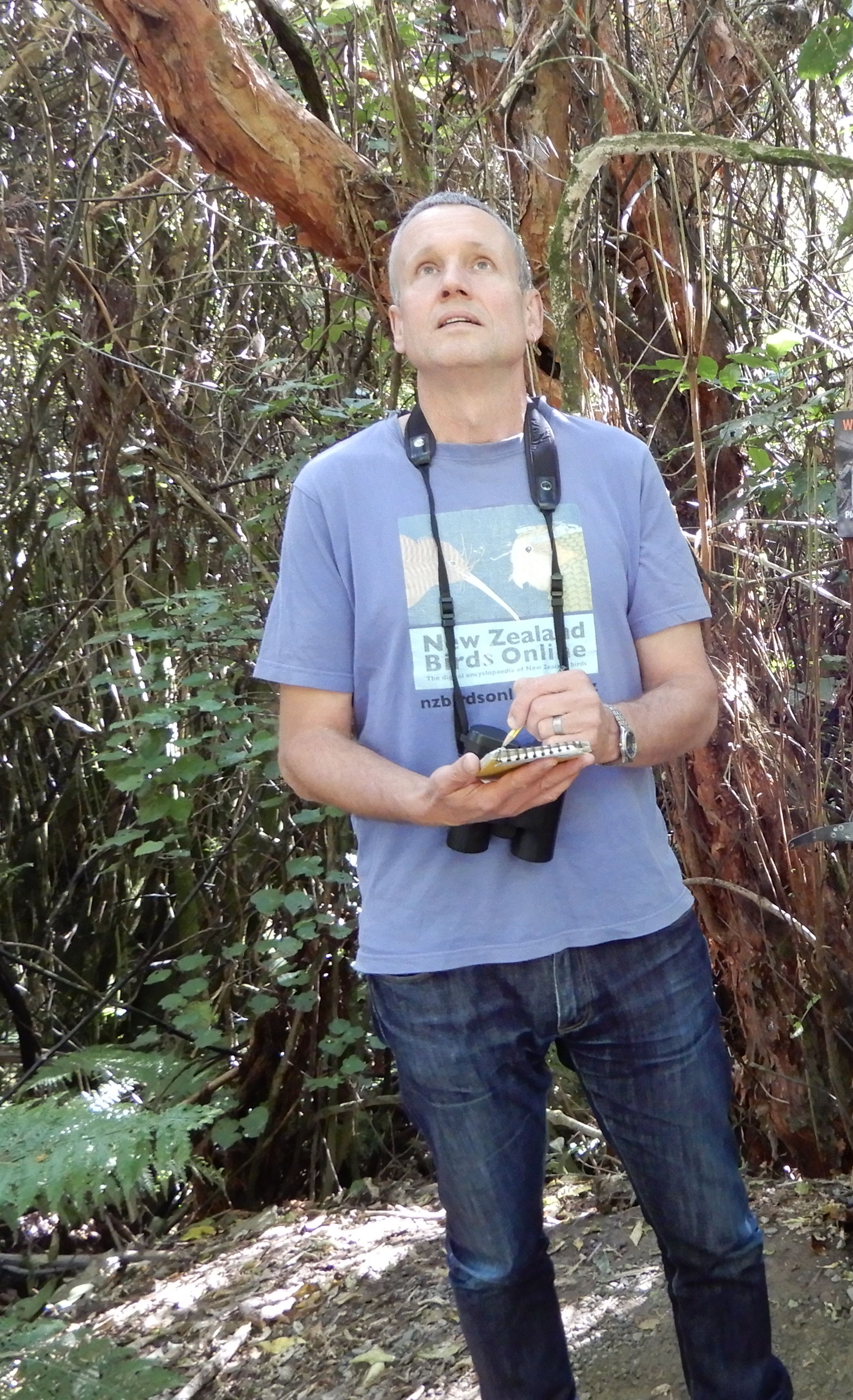Man in blue tshirt and jeans looking up into trees holding a notebook and wearing binoculars