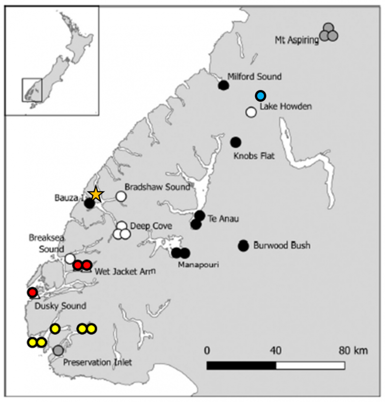 Black and white map of Fiordland, New Zealand with red, yellow, blue, orange, white, black and grey markers on different points of the land. Full New Zealand map as inset.