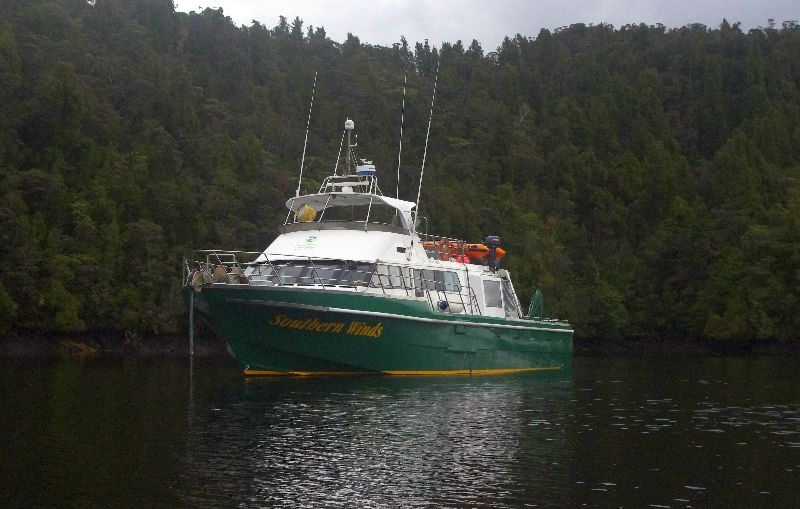 A green, white and yellow boat is anchored in the dark water, with dark green trees in the background.