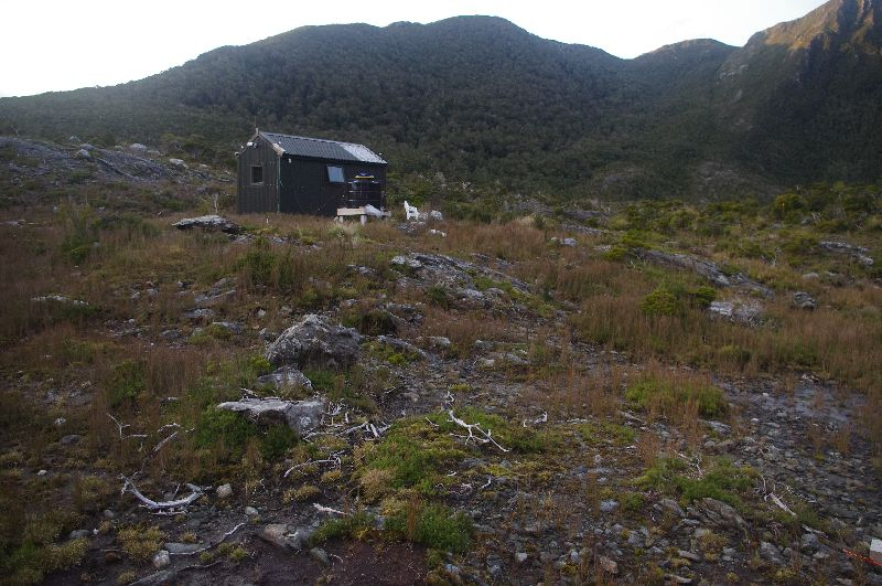A dark green hut is on the side of a mountain slope covered in alpine grasses and dead branches. A dark mountain ridge behind it.