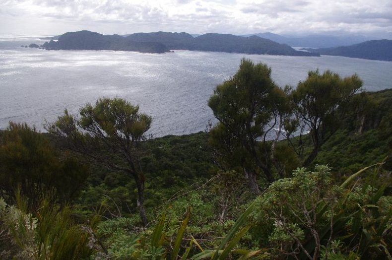 Bush-covered hills in foreground of grey sea, blue mountains and mottled sky in background.