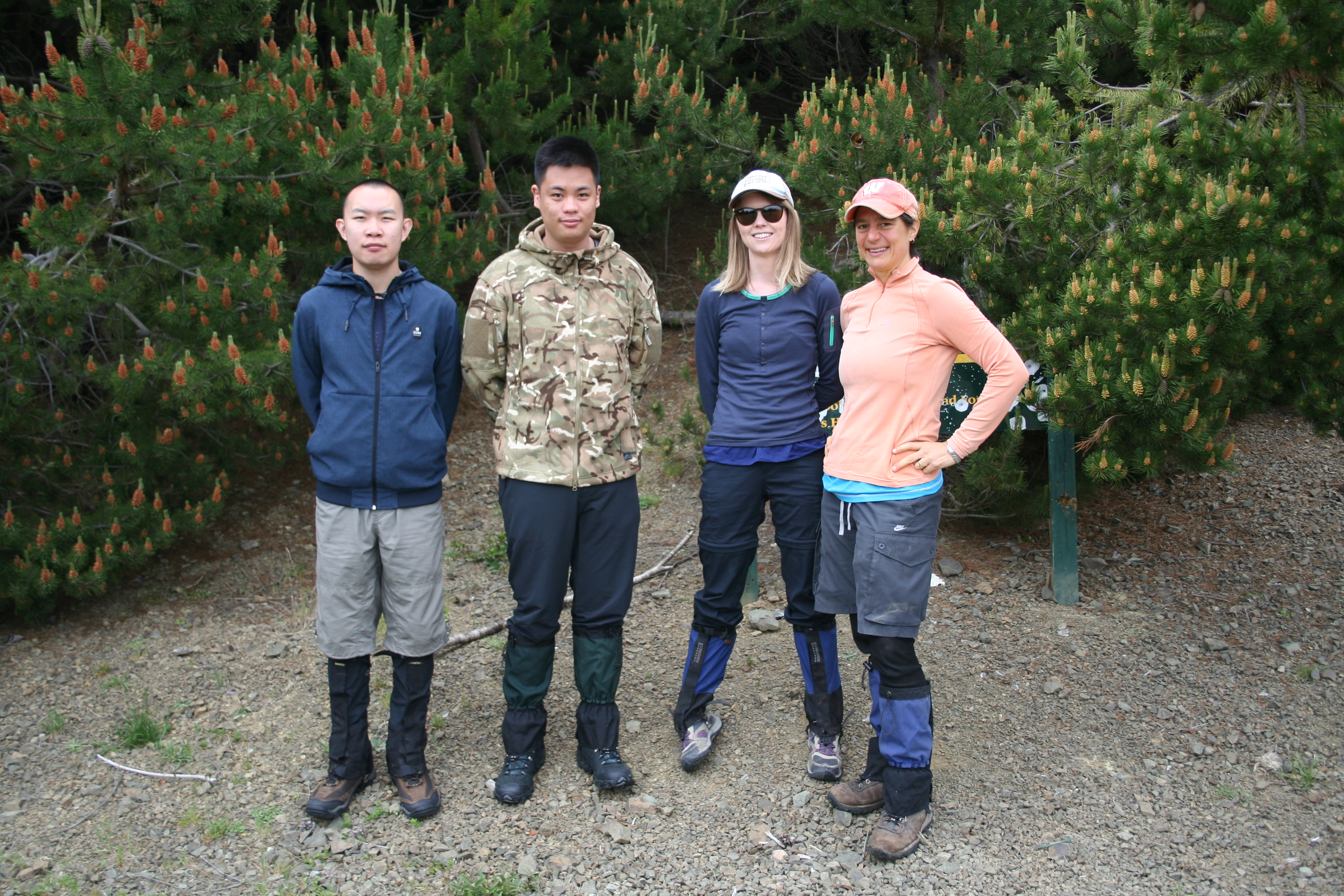 Four people standing on a dirt track in front of bushes.