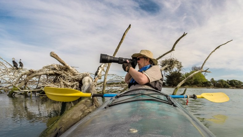A man with a large camera sitting in a kayak with yellow paddles. There are herons sitting on tree debris in the background
