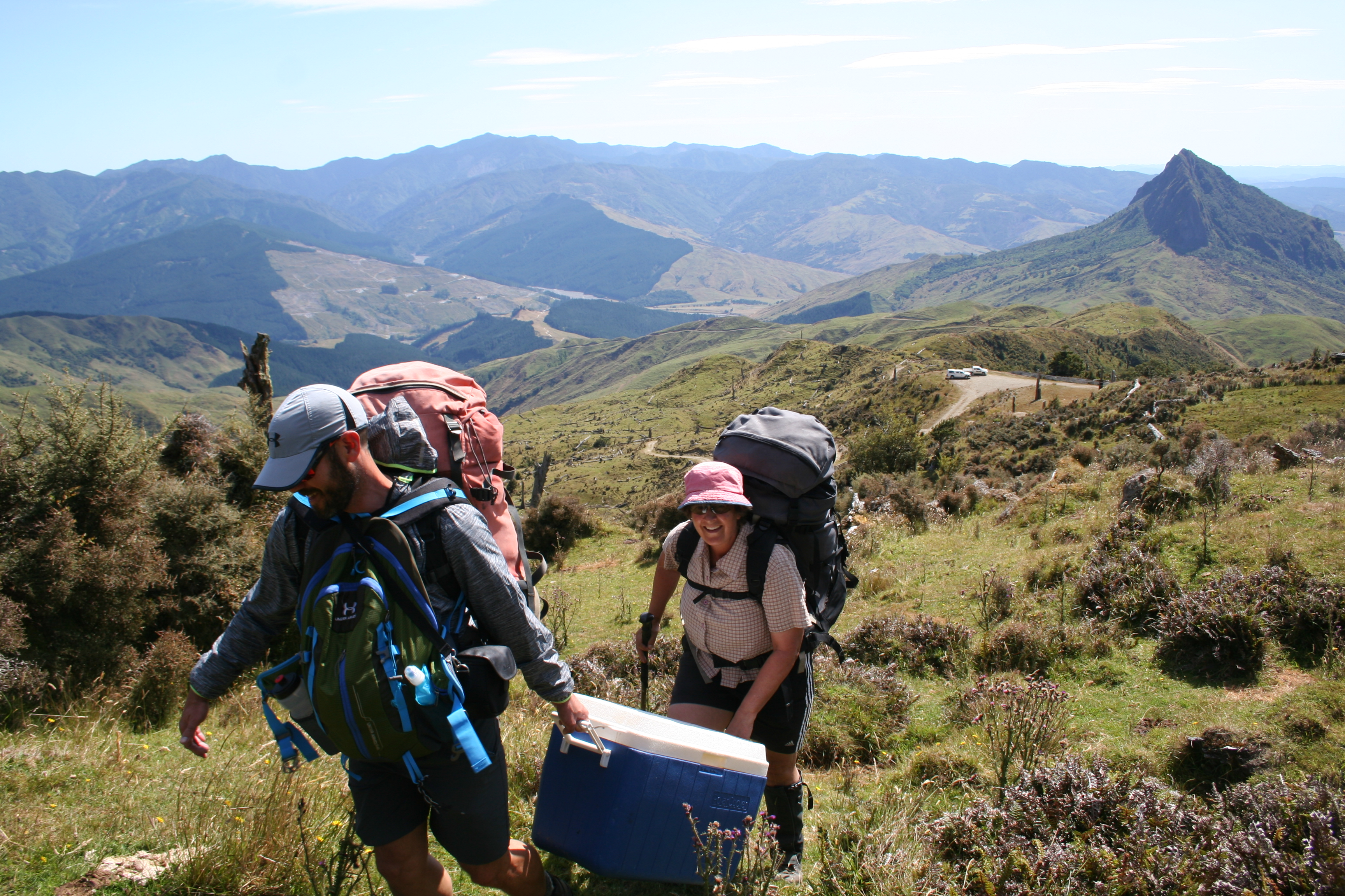 Santiago and Kerry carrying some of our gear from the vehicles up to Hikurangi Hut, where we would stay for two nights. 30 Jan 2020. Photo by Heidi Meudt @ Te Papa.