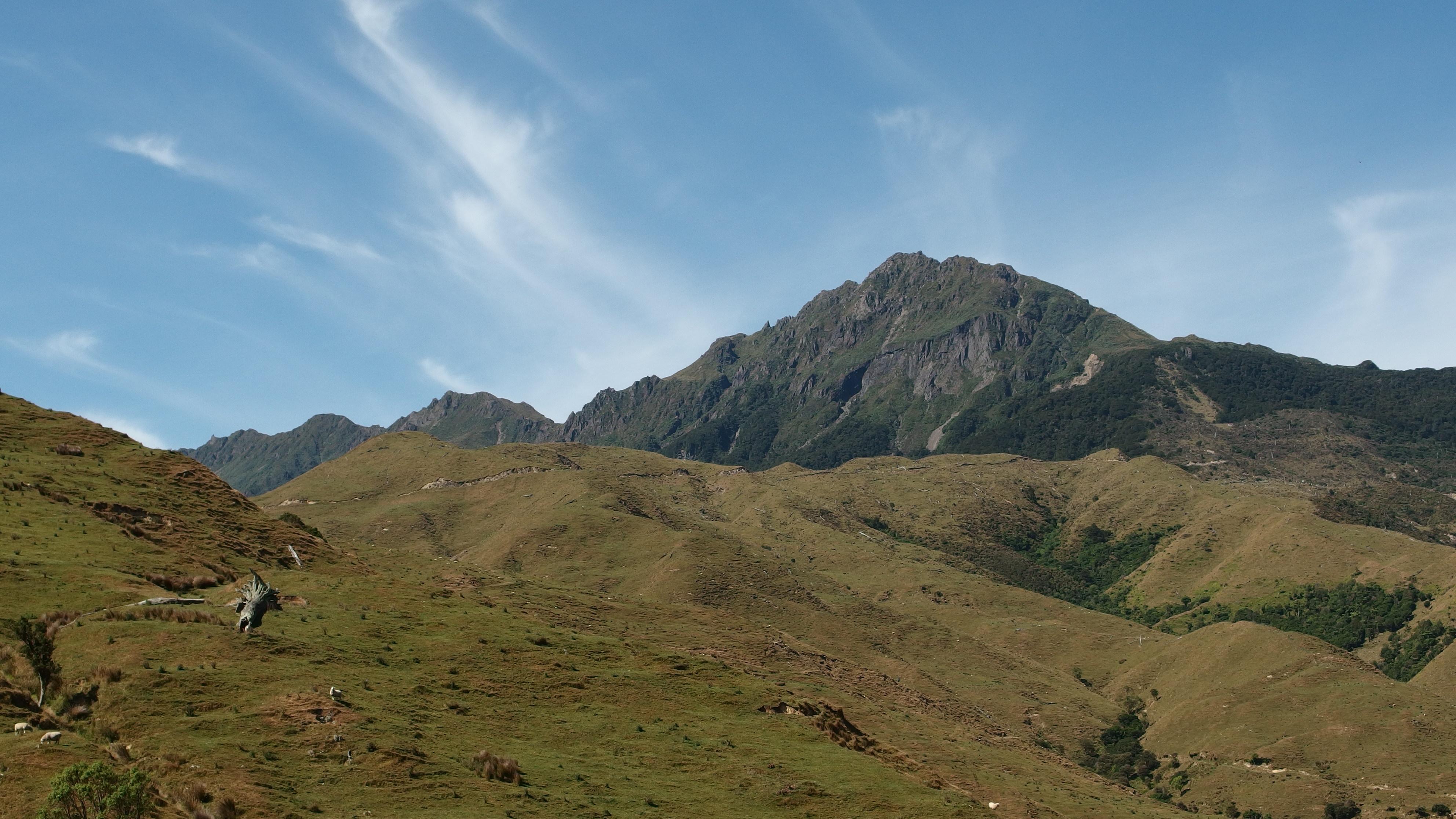 The maunga: Hikurangi. Photo by Kerry Ford, Manaaki Whenua-Landcare Research.