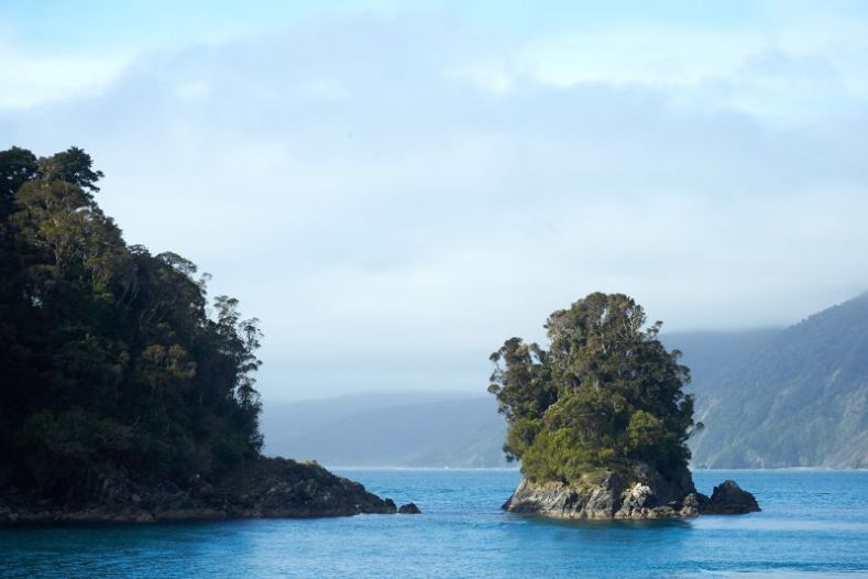A small rocky island covered in trees sits in blue sea next to a bush-clad piece of land. There are mountains in the background