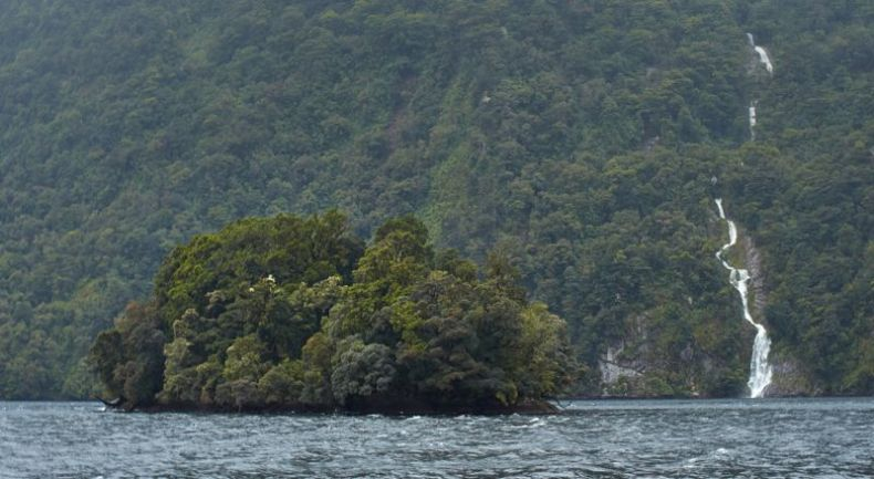 A small tree-clad island in the foreground with a bushy mountain with a waterfall in the background