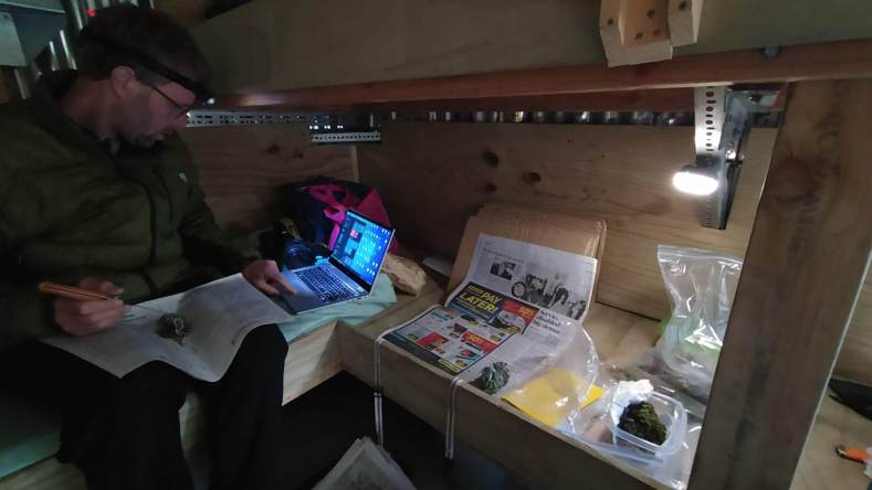 The bottom bunk in Lauder Basin Hut has been converted into a plant processing and databasing station. We also stayed one night in this cozy hut. Jan 2021, photo by Heidi Meudt @ Te Papa.