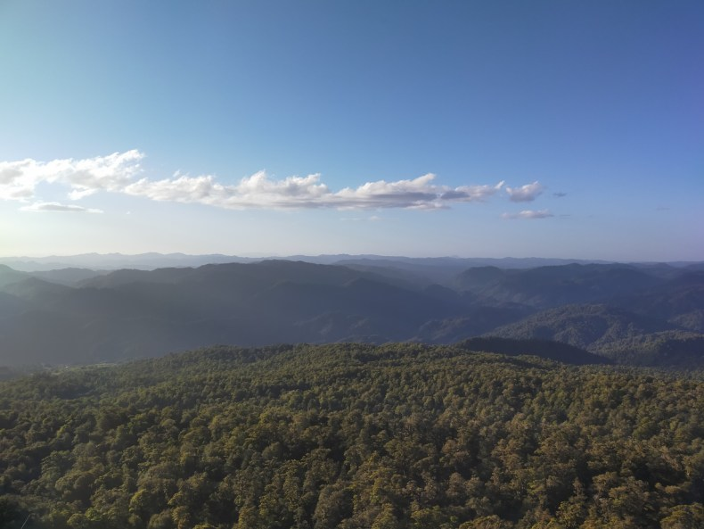 View from the maunga to Maungapohatu village and surrounding bush, Dec 2020. Photo by Antony Kusabs @ Te Papa.