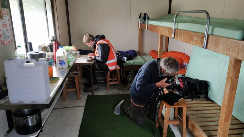 The botanists have temporarily taken over Kirtle Burn Hut, Pisa Range, and turned it into a plant processing lab (Ant) and imaging studio (David). We also stayed one night in this DOC hut. Jan 2021. Photo by Heidi Meudt @ Te Papa.