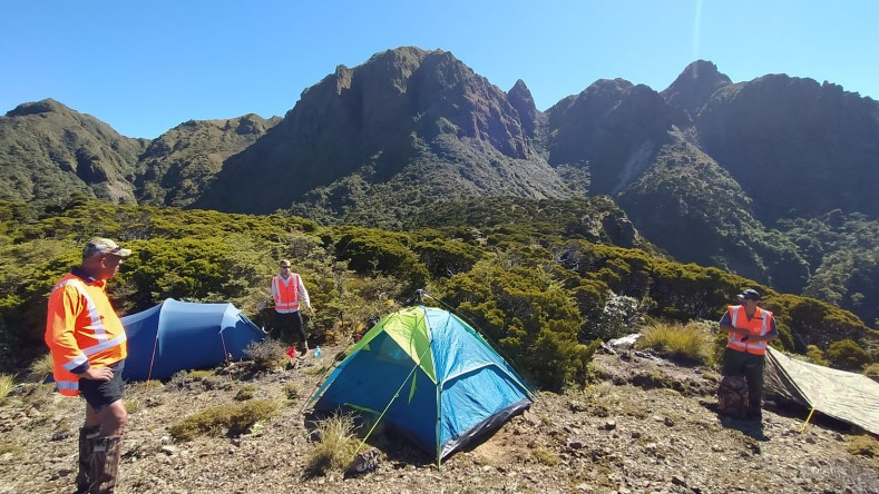 At our campsite on Whanokao with Wiremu, Ant and Graeme, Dec 2020. Photo by Heidi Meudt @ Te Papa.