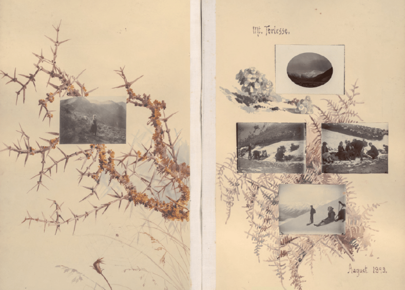 Page spread of an album. On the left page is a branch of thorny matagouri with a single photograph of two women standing on a tussock-clad hillside. On teh right hand side four photographs are mounted over watercolour sketches of bracken. The page is inscribed 'Mt Torlesse' at the top, and 'August 1893' at the bottom.